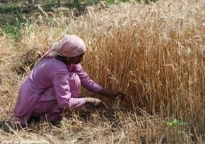 L'India difficile delledonne