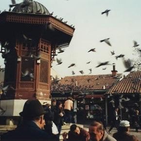 La Cotogna di Istanbul – Ballata per tre uomini e unadonna
