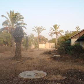 Un kibbutz neldeserto